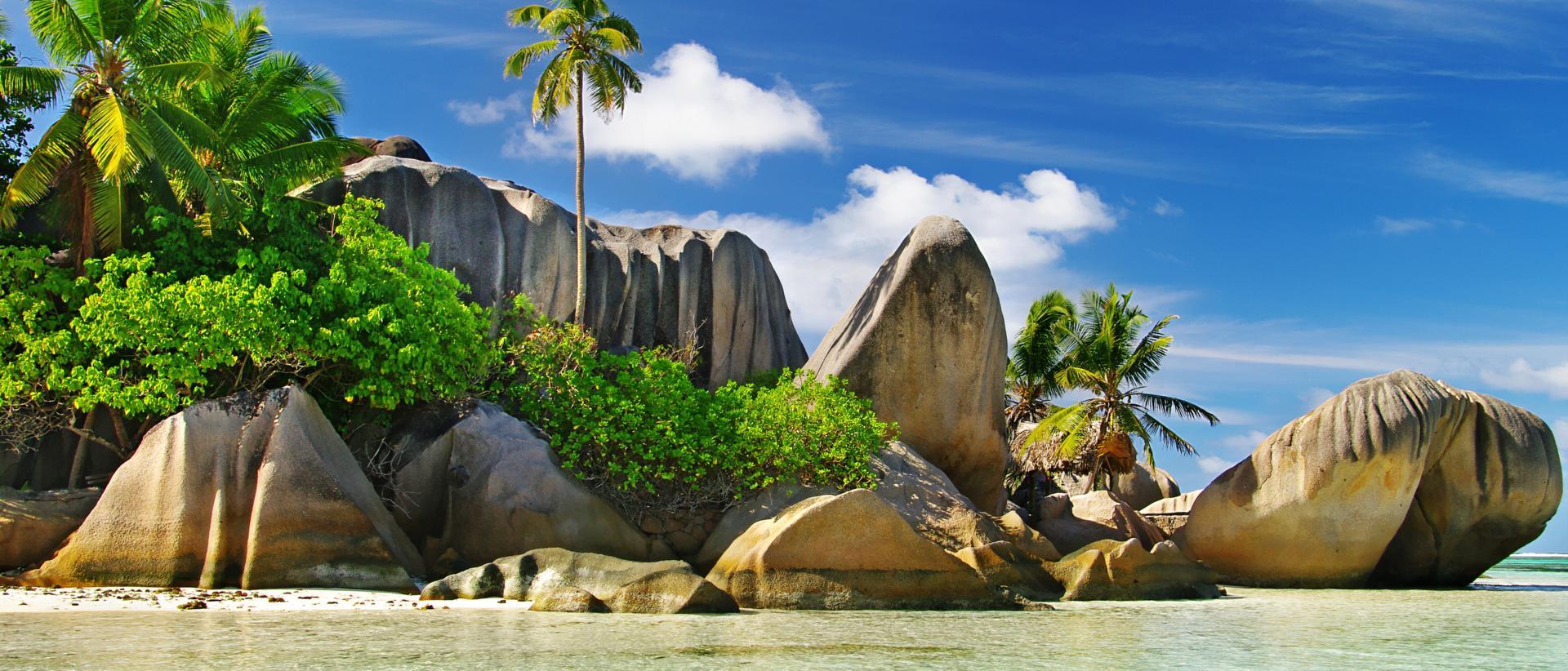 TripAdvisor Seychelles' Vallée de Mai named Top Global Attraction